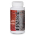 Best Protein Digzyme 60 caps