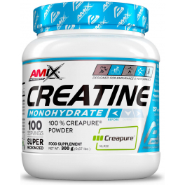 Amix Performance Creatine Creapure 300 gr